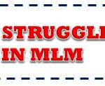 MLM Team